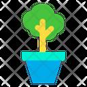 Cultivation Plant Pot Planter Icon