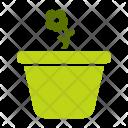 Pot Flower Plant Icon