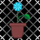 Home Pot Leaf Icon
