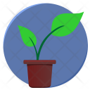 Leaves Green Plant Icon