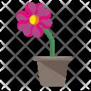 Rowan Home Plant Icon