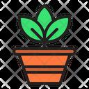 Pot Plant Spring Season Icon