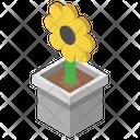 Pot Plant Sunflower Outdoor Plant Icon