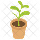 Pot Plant Houseplant Leaf Plant Icon
