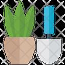 Pot Plant House Planting Aloe Vera Plant Icon