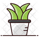 Potted Plant Indoor Plant Natural Plant Icon