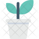 Potted Plant Small Icon
