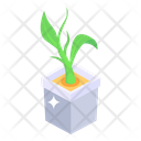 Plant Potted Plant Growing Plant Icon