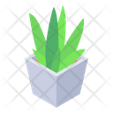 Home Plant Potted Plant Houseplant Icon