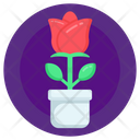 Potted Rose Icon
