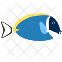 Powder Blue Tang Fish Icon