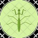 Praying Mantis Bug Insect Icon