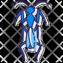 Praying Mantis Icon