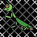 Praying Mantis Mantis Bug Icon
