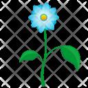 Present Blue Leaf Icon