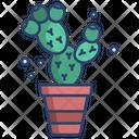 Prickly Pear Cactus Cactus Pot Cactus Plant Icon