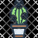 Prickly Pearprickly Pearcactus Desert Icon
