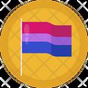 Flag Celebration Gay Icon
