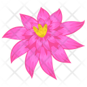 Primrose Willow Wingleaf Primrose Flower Icon
