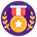 Star Badge Winning Medal Prize Icon