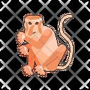 Proboscis Monkey Unique Animal Icon