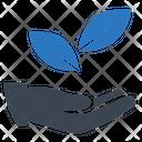 Business Startup Plantation Icon