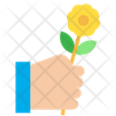 Rose Flower Hand Icon