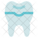 Dental Care Dentist Prothesis Icon