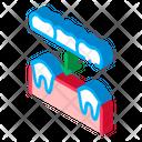 Dental Prosthesis Dentist Icon