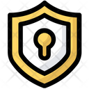 Protection Access Shield Icon