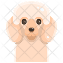 Pudle Icon