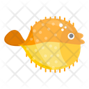 Puffer Fish Tetraodontidae Marine Animal Icon