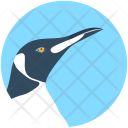 Puffin Bird Hummingbird Icon