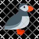 Puffin Bird Animal Icon