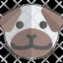 Pug Animal Wildlife Icon