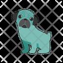 Pug Dog Icon