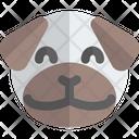 Pug Smiling Animal Wildlife Icon