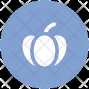 Pumpkin Cucurbita Pepo Icon