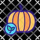 Organic Foods Pumpkin Icon