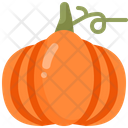 Pumpkin Organic Vegan Icon