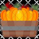 Pumpkin Organic Vegan Icon
