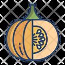 Pumpkin Vegetarian Vegetable Icon