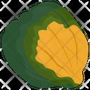 Pumpkin Vegetable Fresh Icon