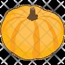 Pumpkin Food Fruit Icon