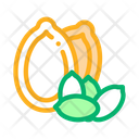 Pumpkin Nut Icon
