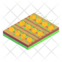 Farm Agriculture Pumpkins Farm Icon