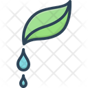 Pure Droplet Water Icon