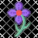 Purple Clematis Icon