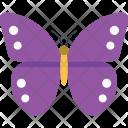 Purple Emperor Butterfly Icon