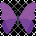 Purple Morpho Butterfly Icon